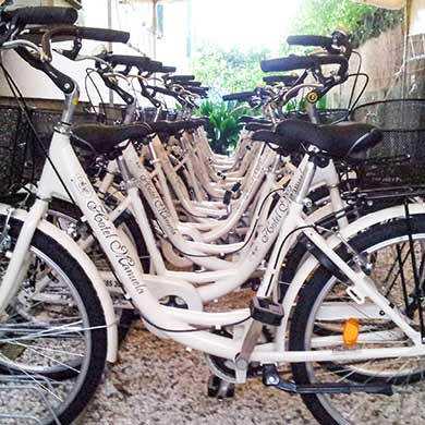 Bike - Manuela Hotel Cinquale